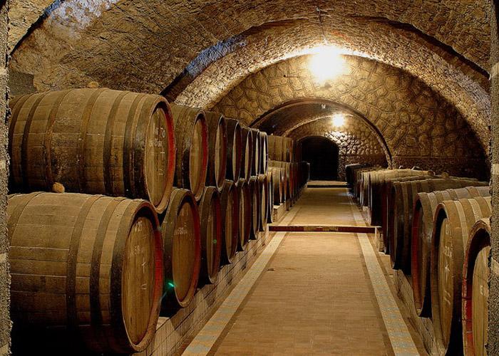 Картинки по запросу центр культури вина шабо
